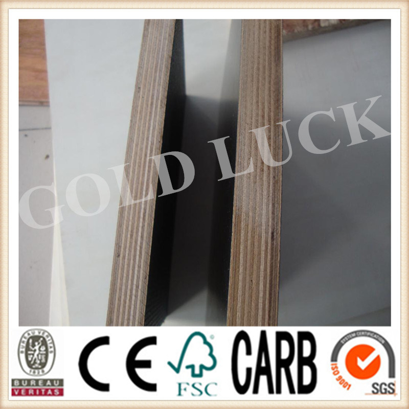 Film Faced Plywood Leakproof Construction Template