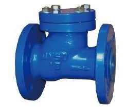 Epoxy Coating Ductile Iron Ball Check Valve