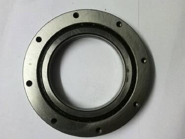 Hot Sale Slewing Bearing for Non Teeth