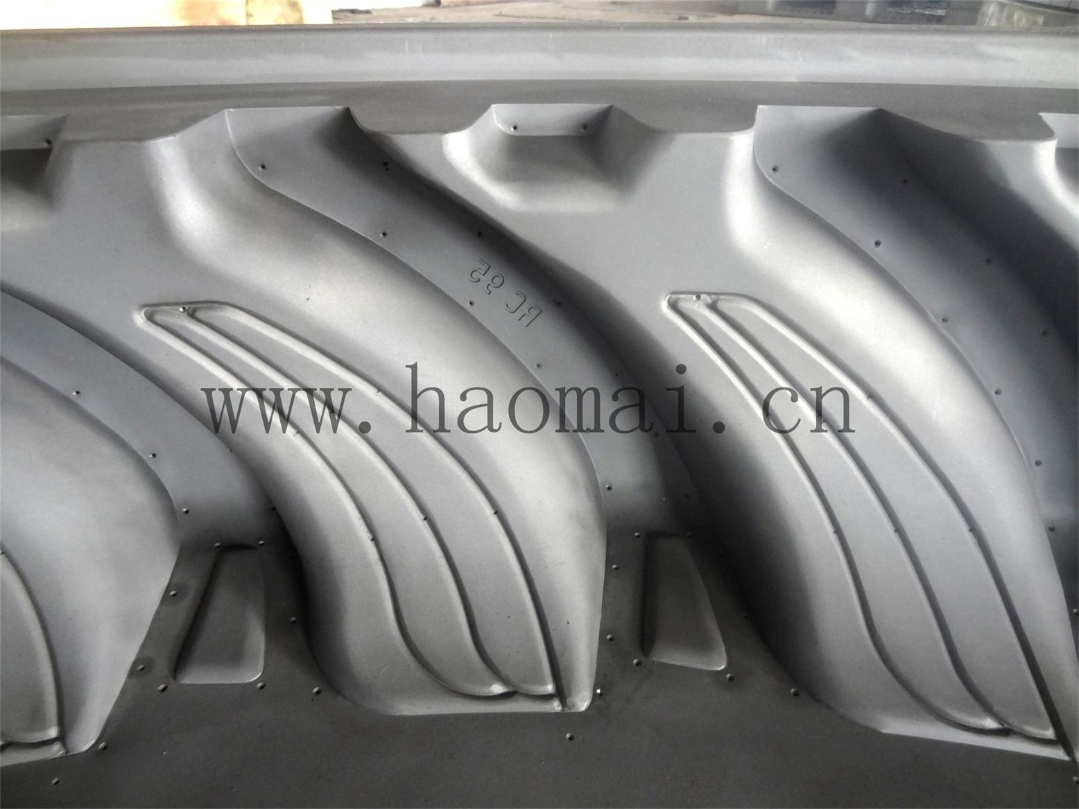 China Famous Agricultural Tire Mold