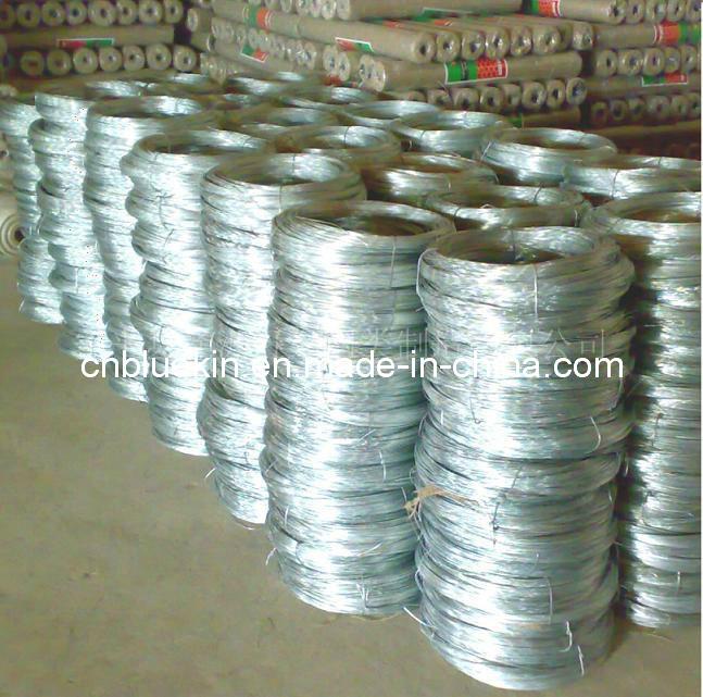 Galvanized Iron Wire (WJ-2863)
