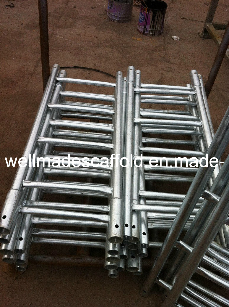 Metal Scaffolding Ladders : China steel ladder cuplock scaffolding