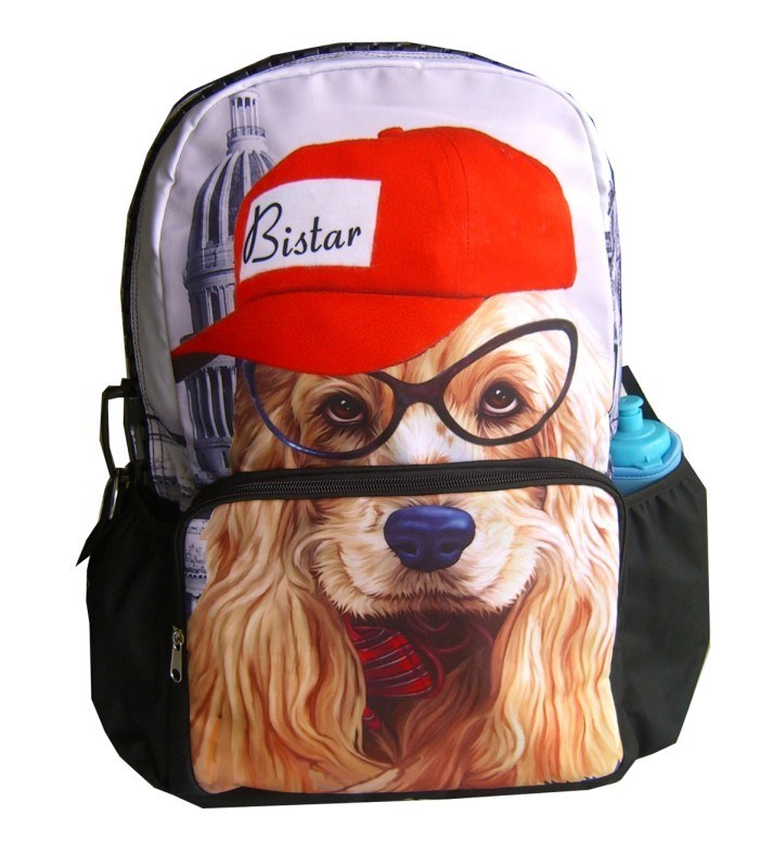 2012 School Anime School Bags and Backpacks (HS-22)