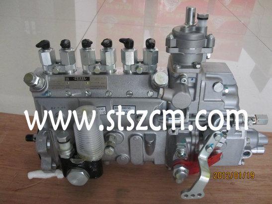 China Electric Fuel Pump Cny3602 China Electric Fuel Pump Auto