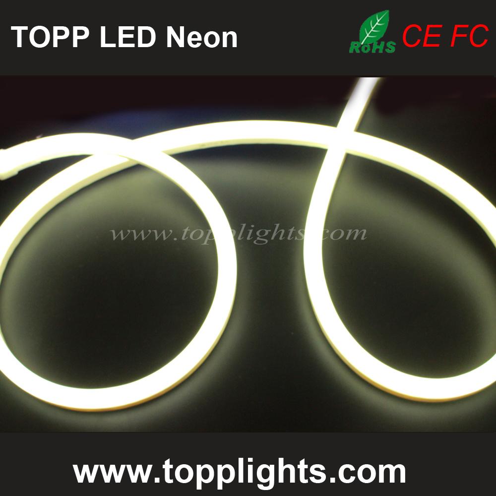 High Bright 80LED/M 100LED/M Waterproof Flex LED Neon Light