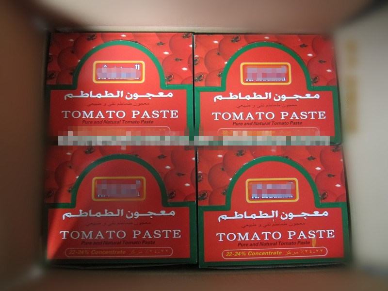 Al Mudish Wholesale 70g Sachet Tomato Paste with High Quality