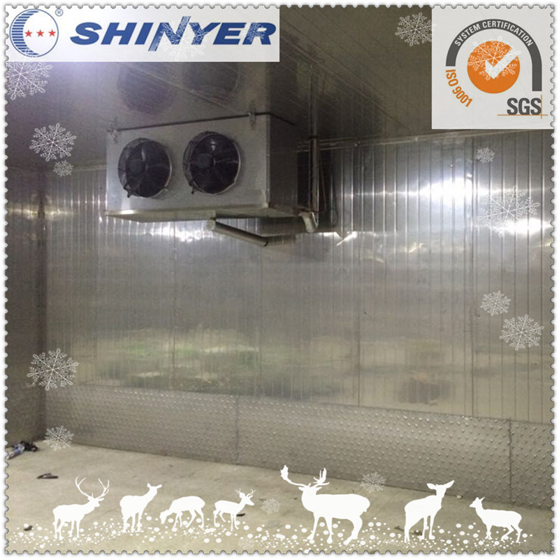 Combined Freezing Cold Storage for Frozen Seafood