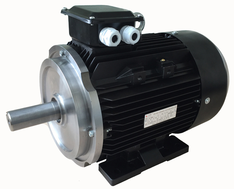 Ye4 Series (IE4, GB1) Supper Efficiency Three Phase Induction Motor