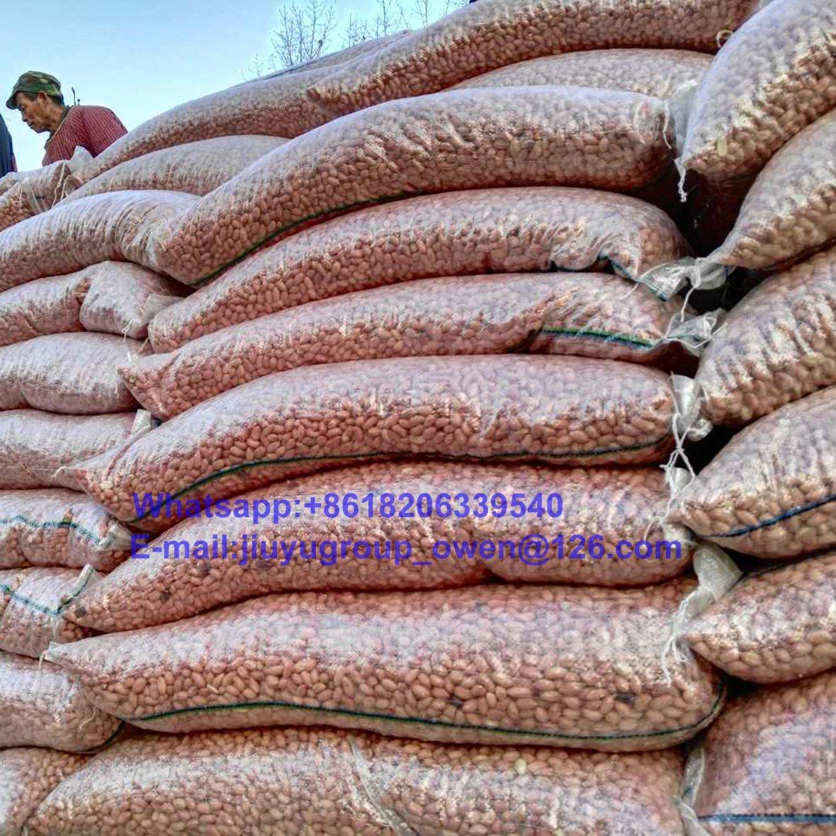 New Crop China Origin Peanut Kernel