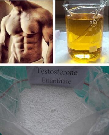 Testosterone Enanthate 600mg/Ml Primoteston Depot Injectable Steroids 315-37-7