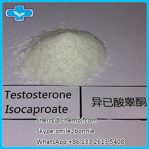 Raw Material Bodybuilding Steroid Powder Testosterone Isocaproate