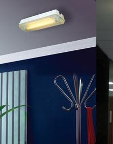 LED Security Light, LED Light, LED Emergency Light, LED Lamp