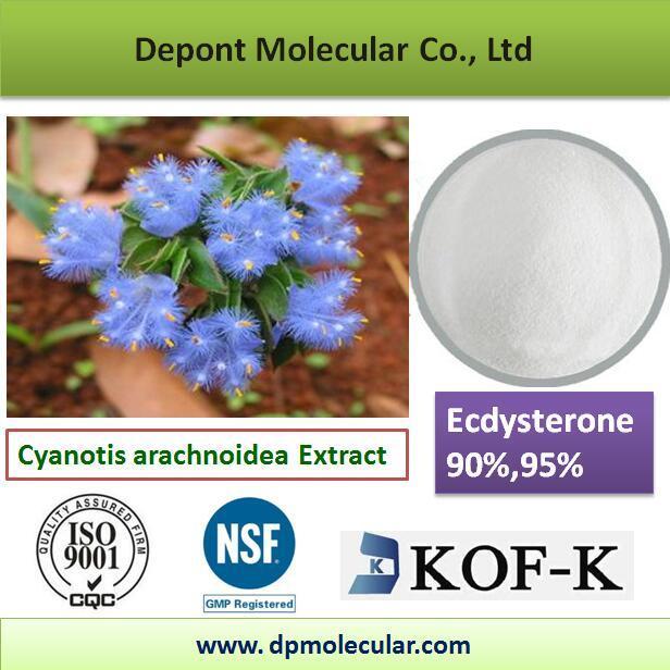 Ecdysterone 90%, 95%, CAS No. 5289-74-7
