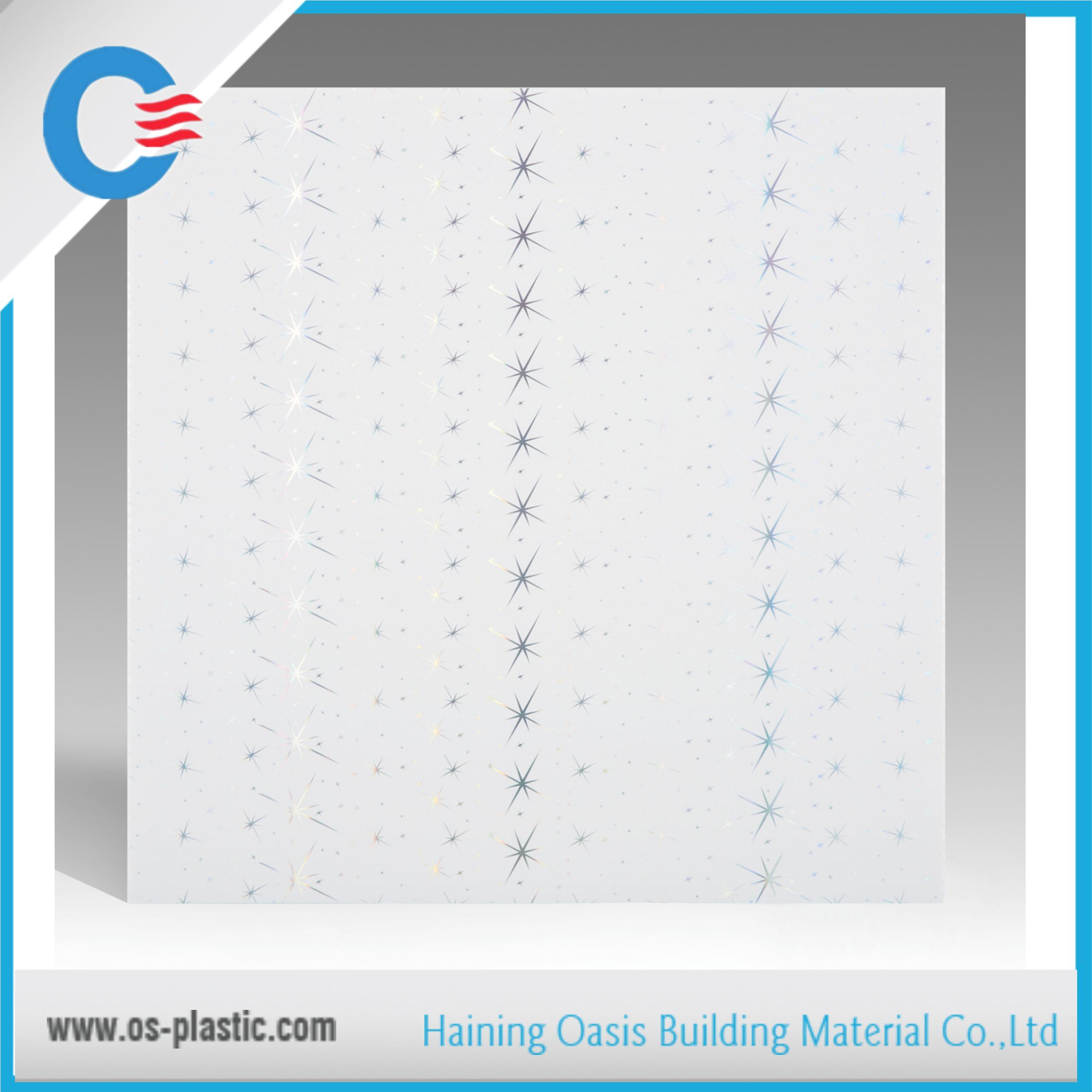 59.5*59.5cm Waterproof PVC Ceiling Panel