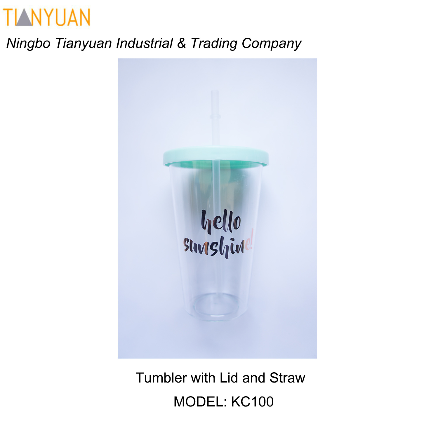 Insulated Tumbler with Lid and Straw /Insulated Double Walled Reusable Acrylic Tumbler Cups W/Lid & Straw