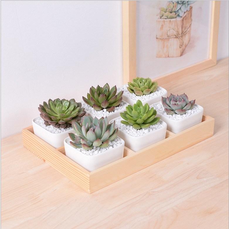 Leisure Desk with 5 Lattice Base Ceramic Pots