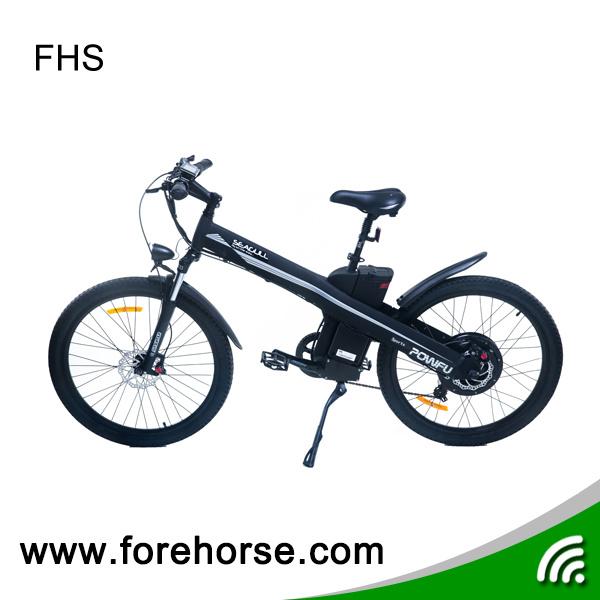 Mountain E-Bike with Hub Motor 36V/250W Electric Bicycle