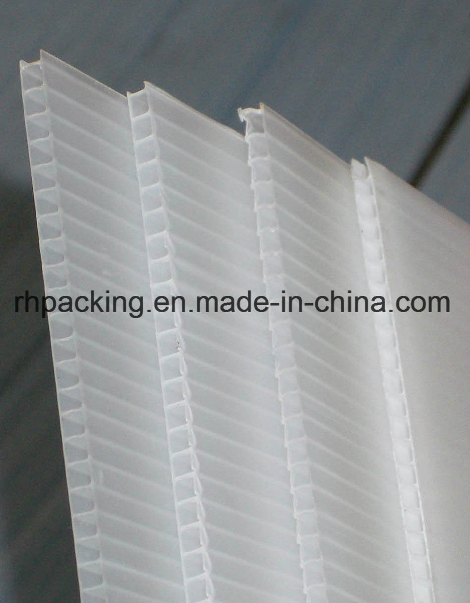 Colorful PP Corrugated Plastic Sheet/PP Sheet/PP Board for Packing, Signage, Protection 2-10mm