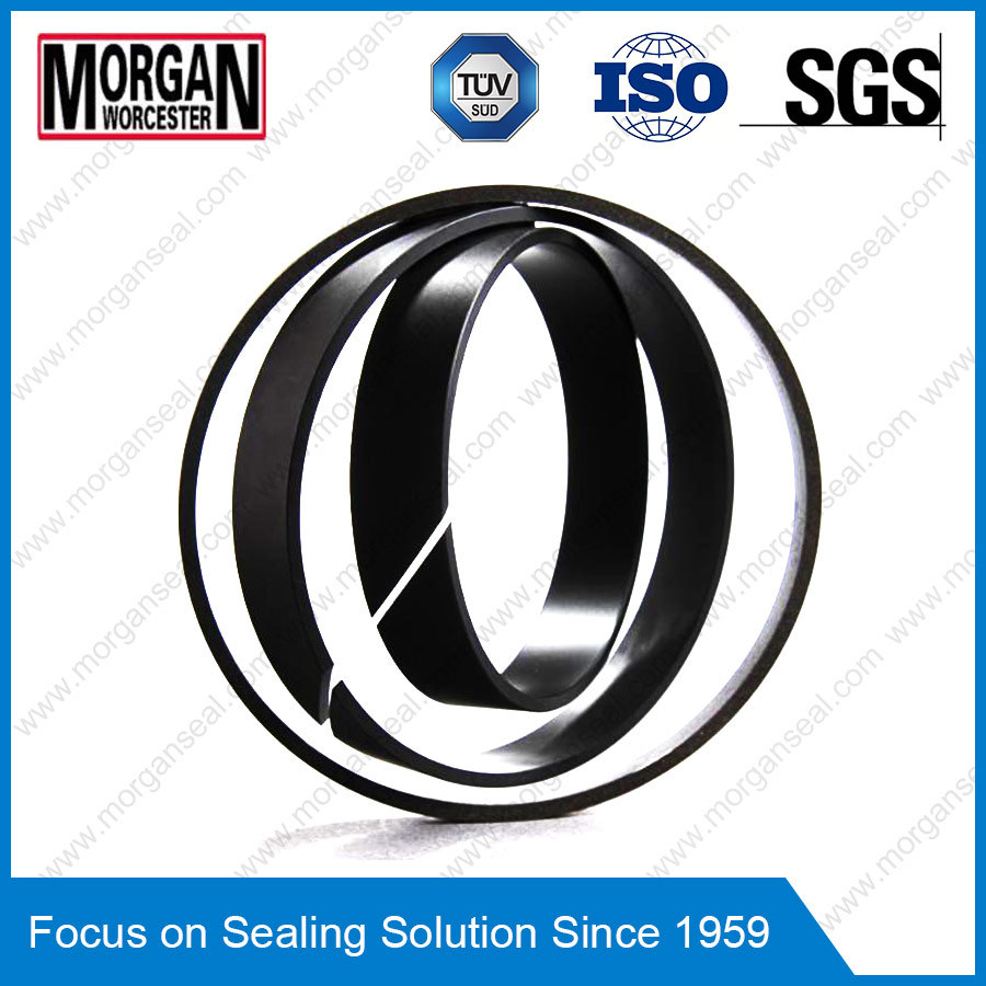 Fra/Gp Profile PTFE/Teflon Piston Guide Ring Seal/Wear Ring