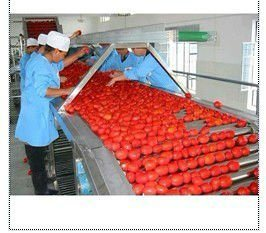 Fruit Fresh Fruits Strawberry Buleberry Paste Jam Production Line