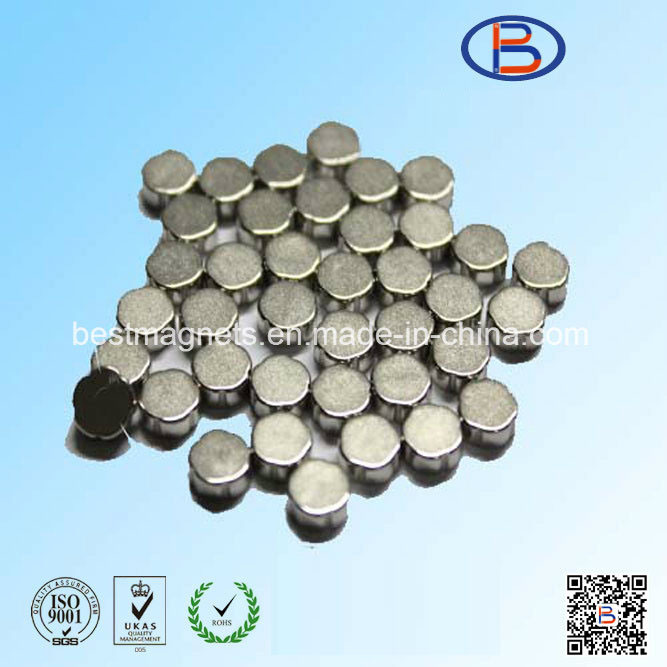 10 Years ISO Factory of Strong Rare Earth Permanent NdFeB Magnet Neodymium Magnet Disc for Speakers