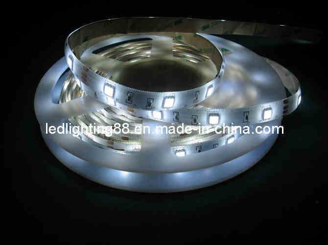 Strip Lights Vs Rope Lights : China 220V LED Rope Light/LED Strip Light - China 220v Led Rope Light/Led Strip Light, Led Strip ...