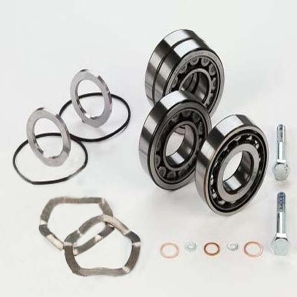 Oil Free Air Compressor Part Roller Bearing Set Manufacture Supplier