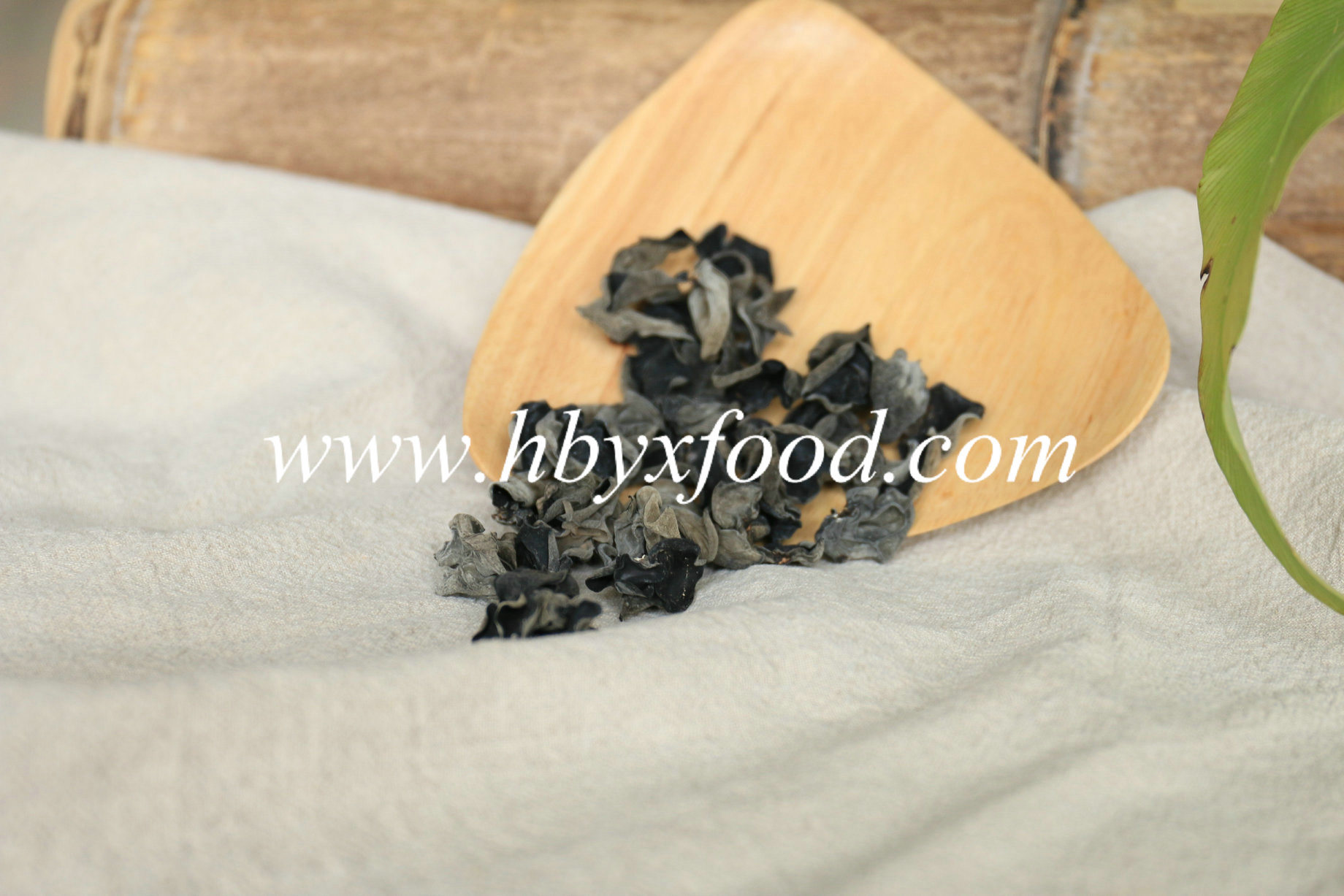 Factory Price Dried Black Fungus Easy to Store and Healthy Vegetable