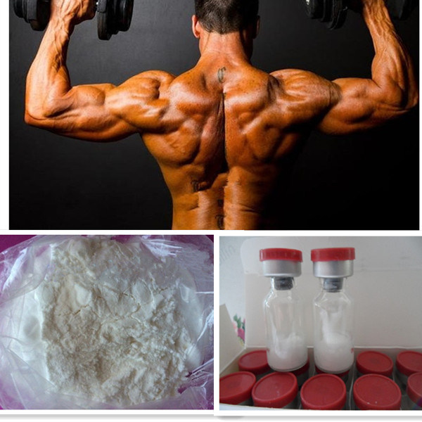 Bodybuilding White Steroid Powders Drostanolone Enanthate