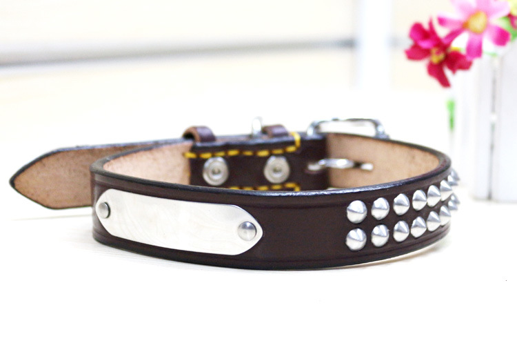 Pet Product Dog Cat Colorful Fashion Collar (C002)