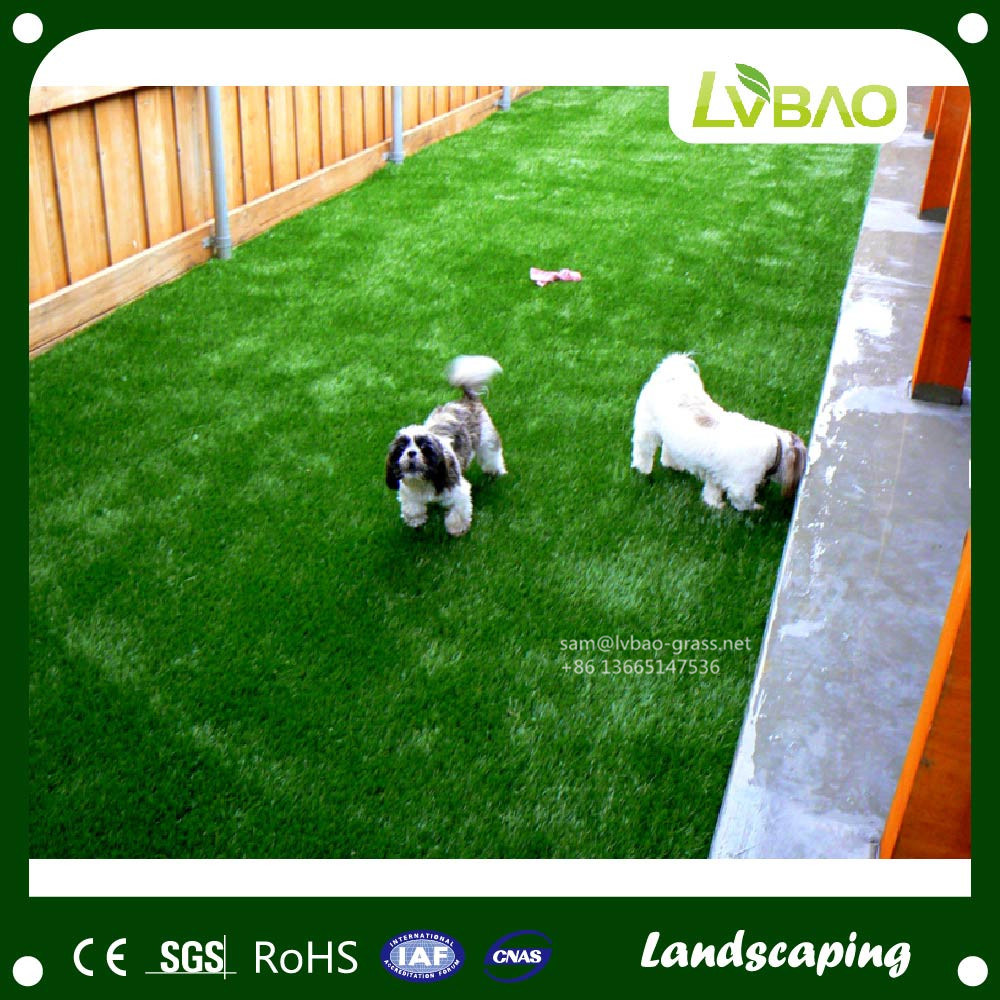 Comfortable Landscaping Garden Artificial Grass for Pet
