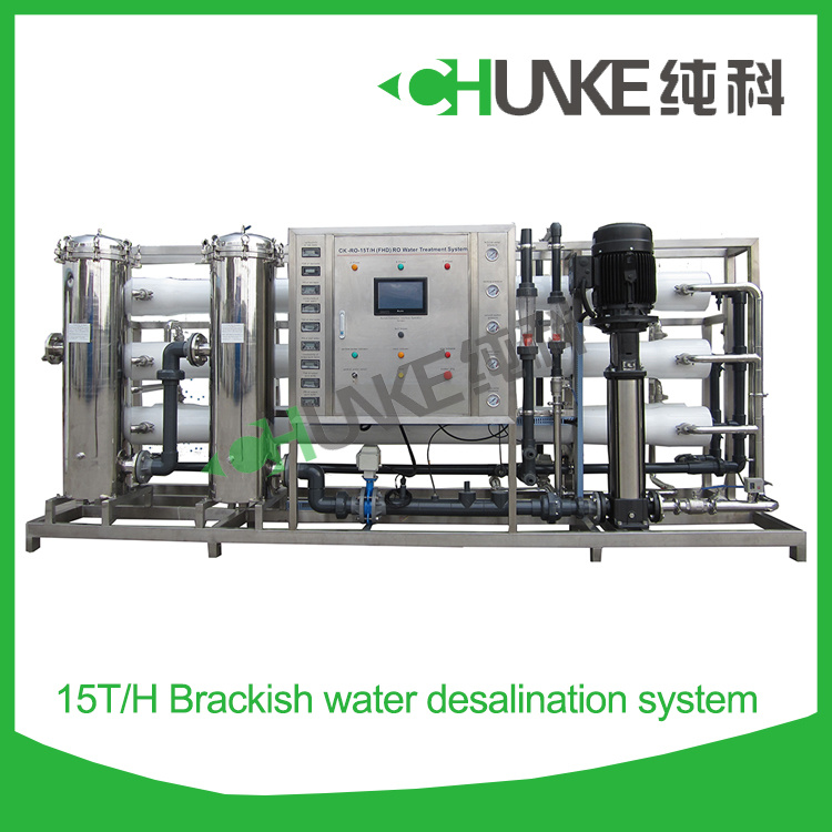15 Tph Automatic RO System Pure Water Treatment Equipment