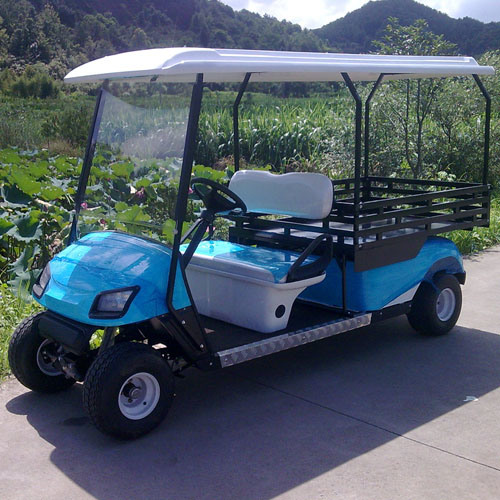 2 Seat Utility Vehicle with Storage Trunk (JD-GE502D)