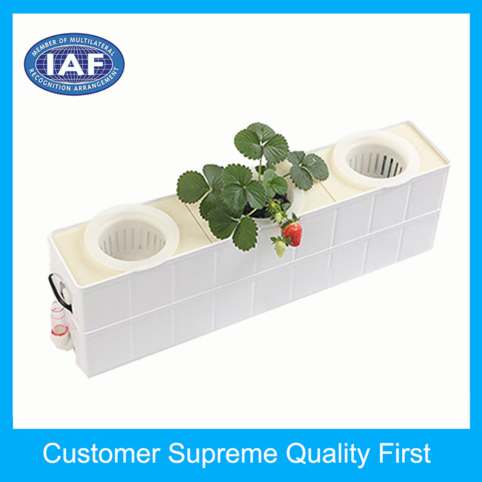 Plastic Flower Pot Making Mould Injection Mould