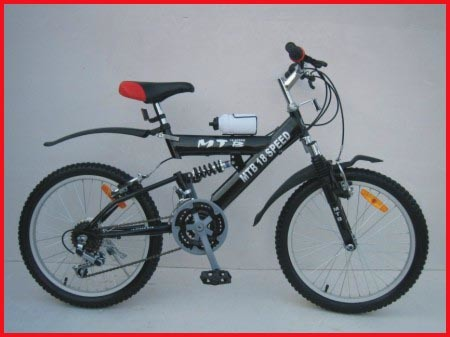 Mountain Bike / Bicycle 2013