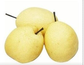 Export New Crop Fresh Good Quality Ya Pear
