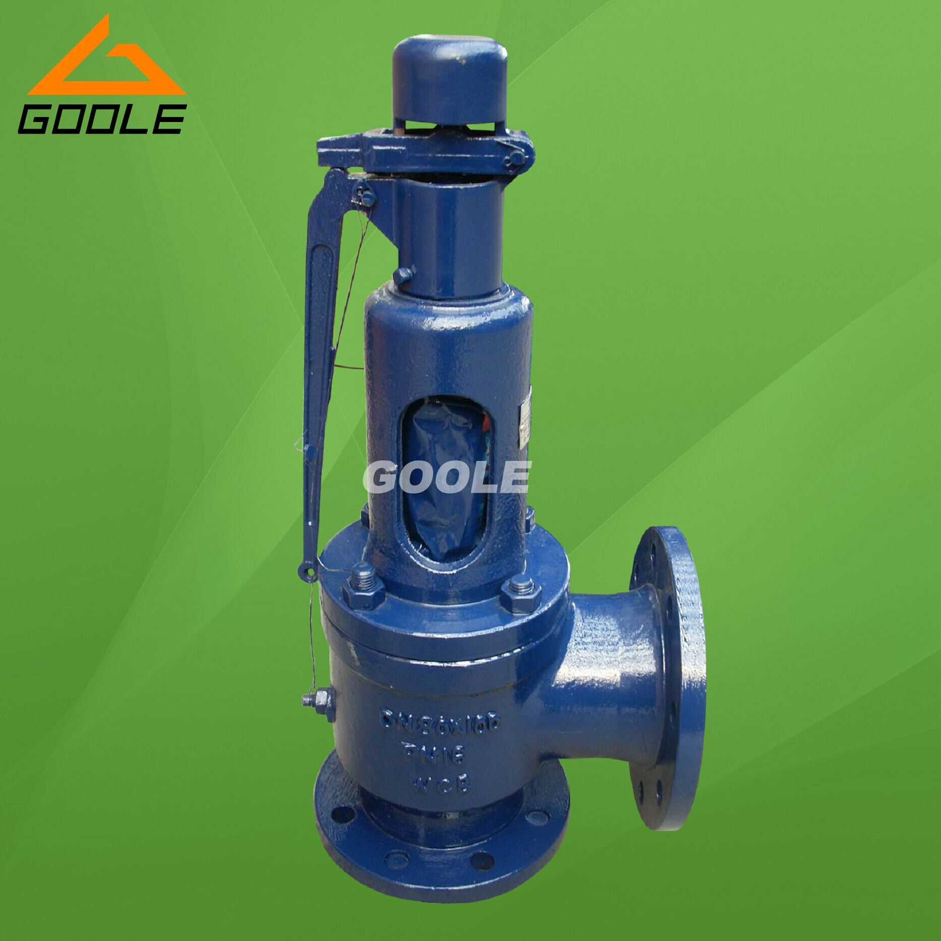Steam Spring Loaded Pressure Safety Relief Valve (GA900)