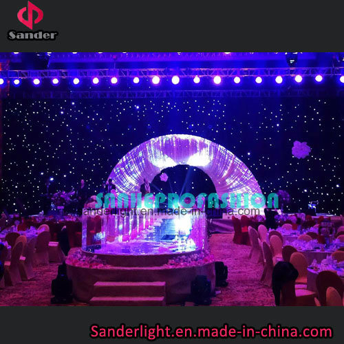 Hot Show Used LED Starlit Curtain for Wedding with Blue and White Lamp