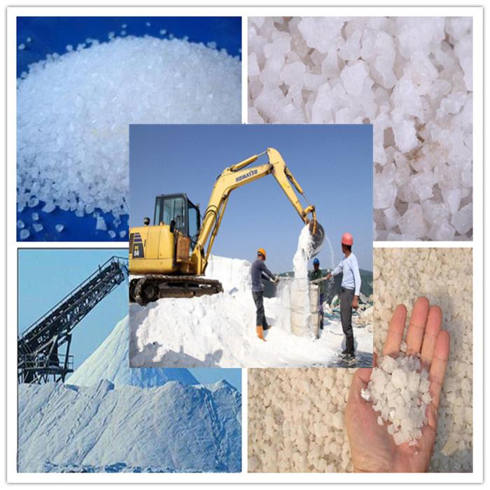 China Manufacturer Produce Sea Salt