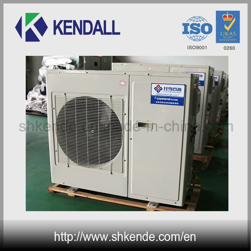 Low Temperature Copeland Refrigeration Compessor for Cold Storage Room