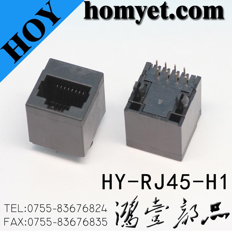 Professional Manufacturer RJ45 Female Connector/RJ45 Jack for Socket (HY-RJ45-H1)