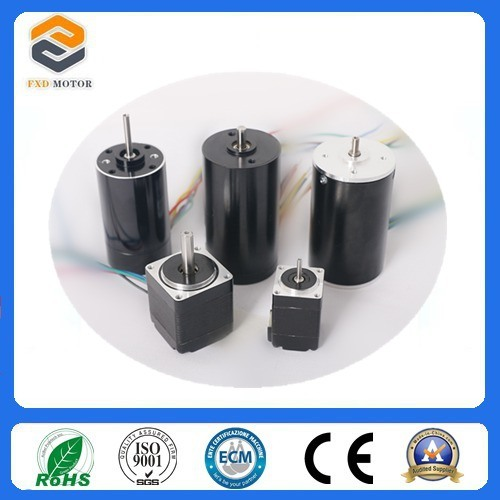 57mm Size Brushless DC Motor for Packing Machine