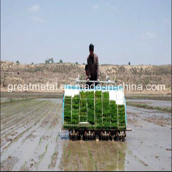Multi-Function Paddy Field Agricultural Transplanter (2ZT-6300B)