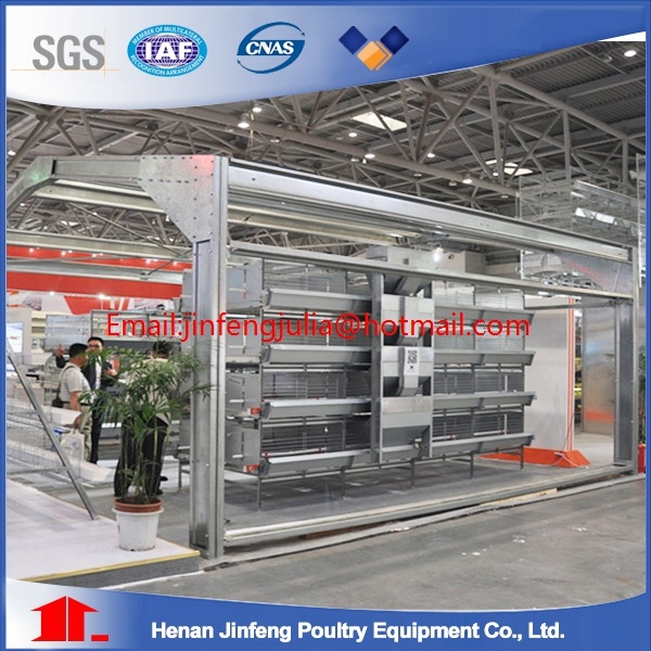 H Type Chicken Cages for Latinamerica