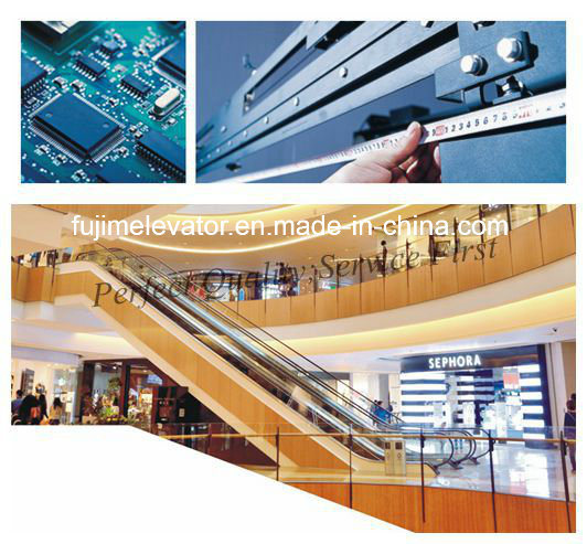 Fujim Indoor Passenger Escalator for Shopping Mall
