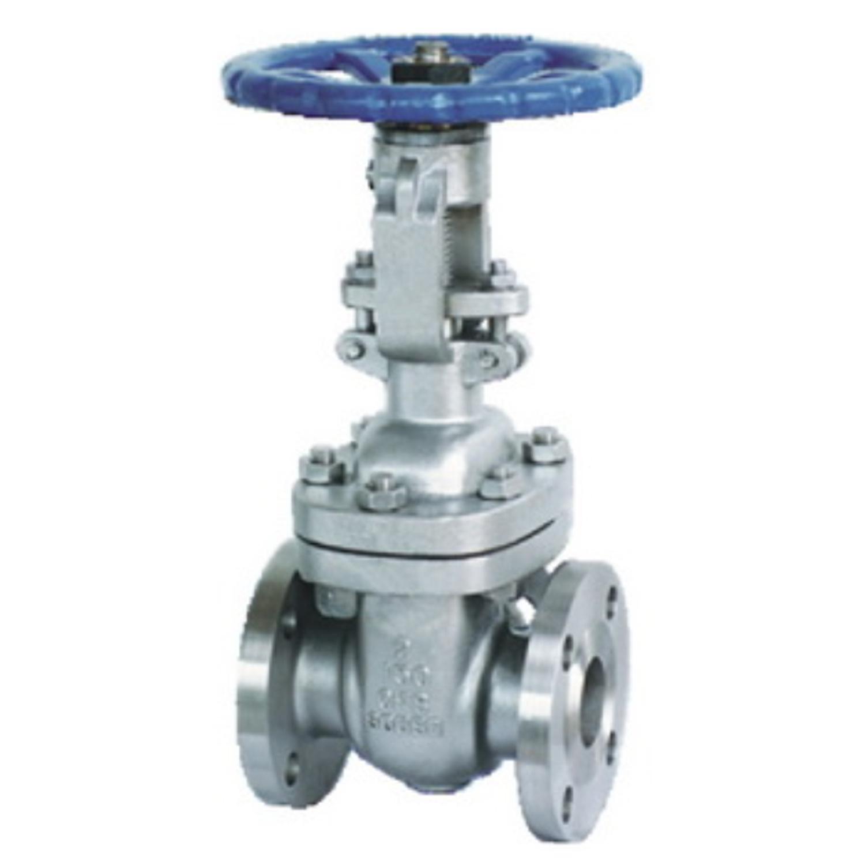 china stainless steel ansi flange gate valve   china