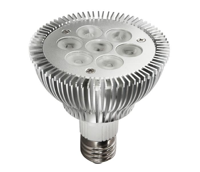LED Light PAR30 Spotlight with CREE LEDs