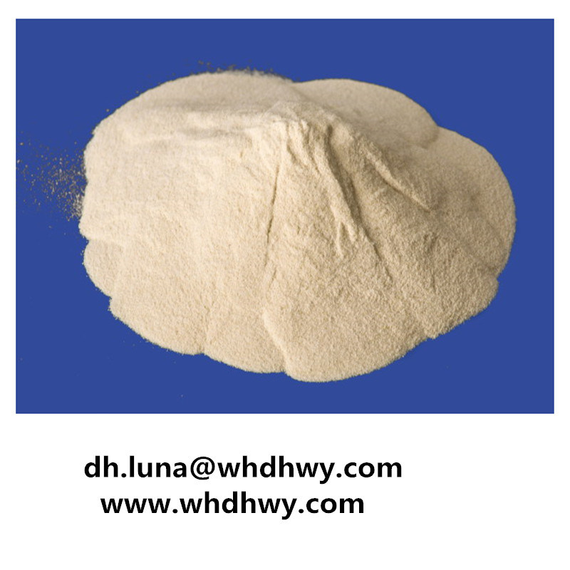 Super Good Purity Lactose Without Side Effect (CAS No. 10039-26-6)