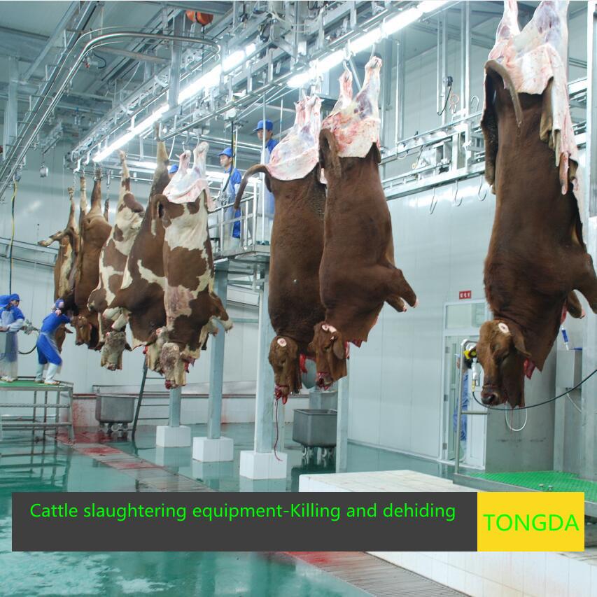Cow Slaughterhouse Made Inchina