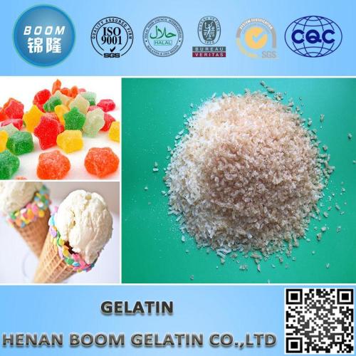 Food Grade Halal Fish Gelatin